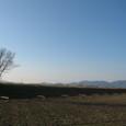 長閑な景色