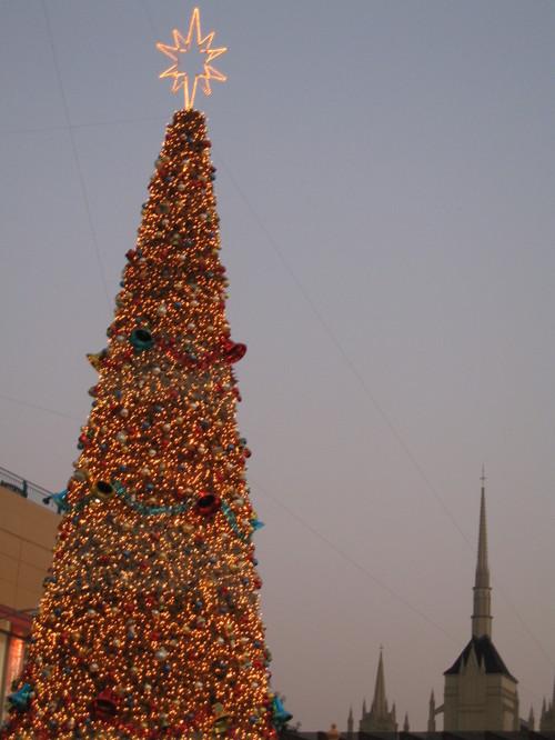 夕暮れのクリスマスツリー
